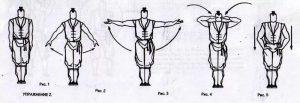 гимнастика цигун для начинающих
