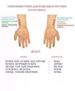 пульсовая диагностика тибетской медицины