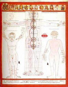 сосуды тибетская медицина