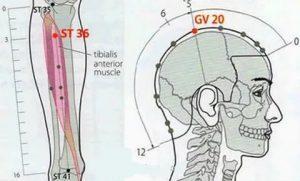 точки для похудения в китайской медицине