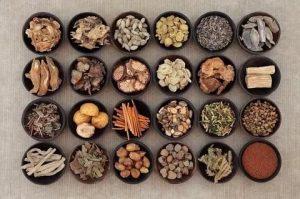 травы китайской традиционной медицине