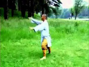 утренняя китайская гимнастика цигун